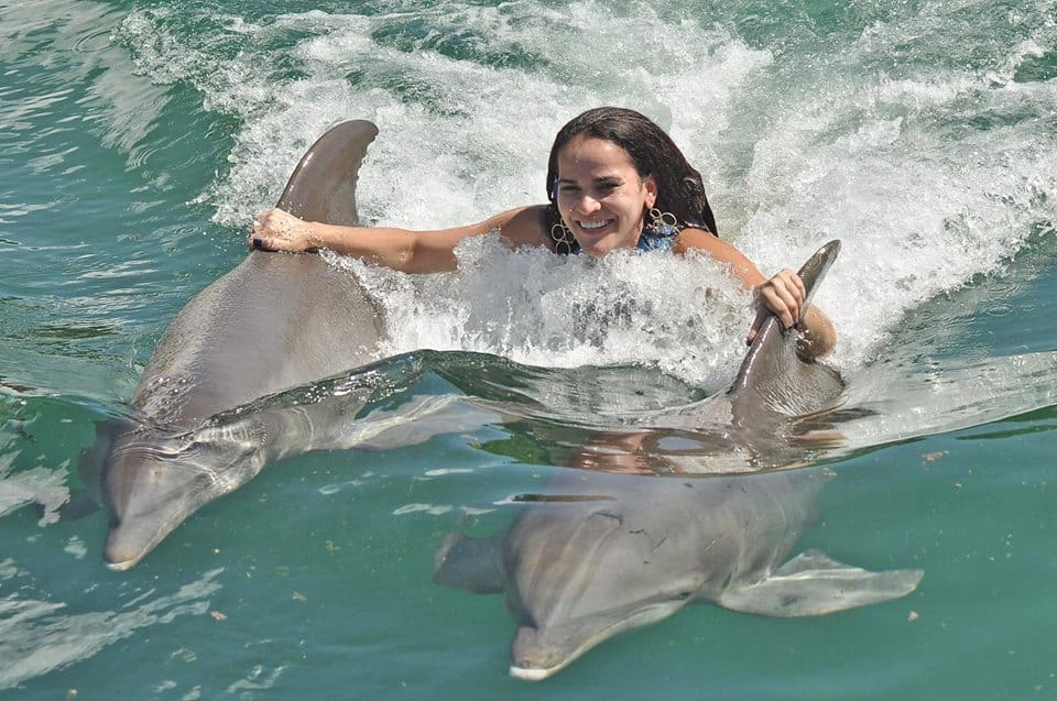 with two dolphins