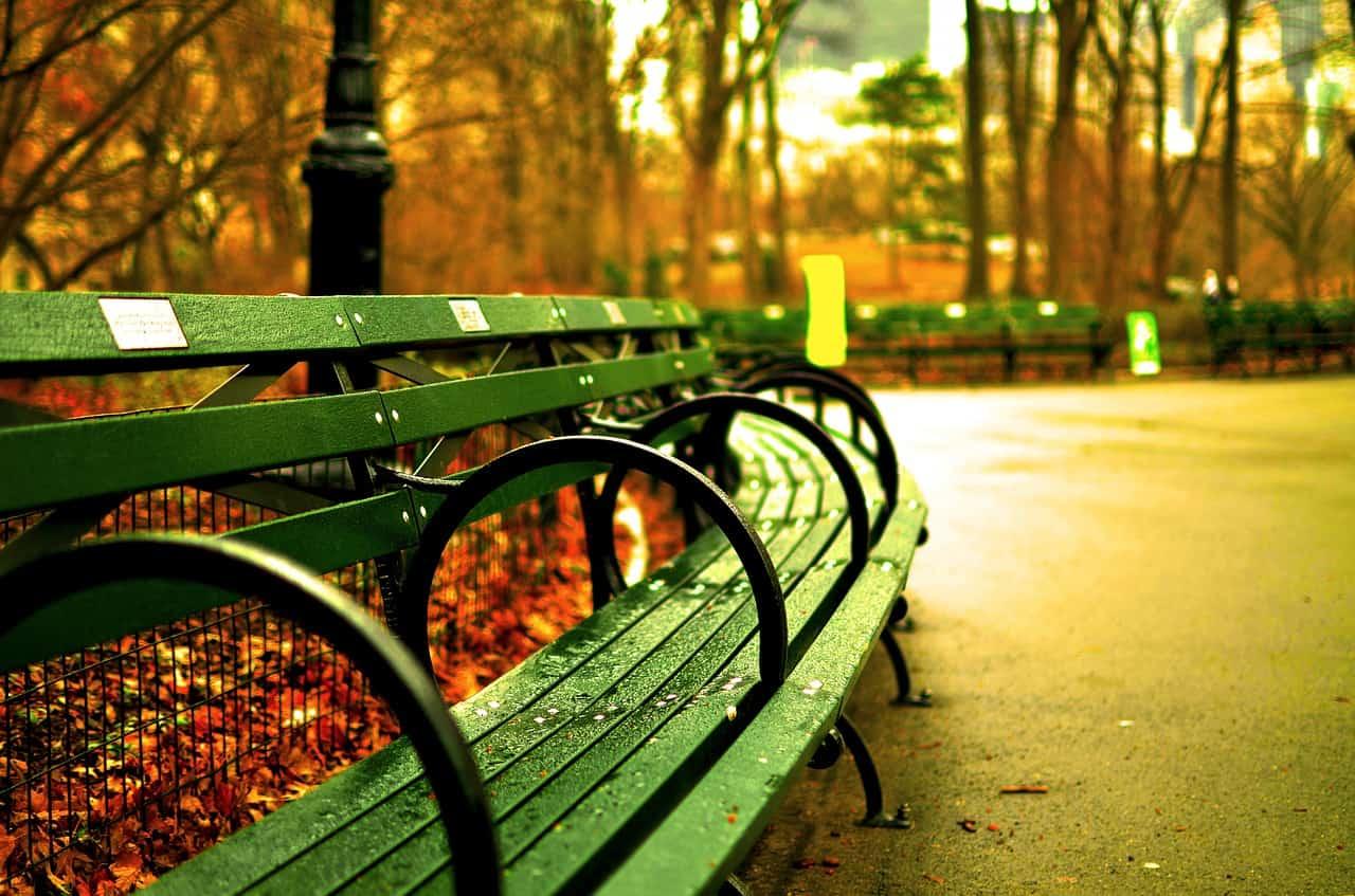 central-park-bench-fall-nyc-newyork-autumn